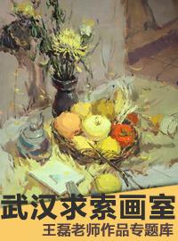 武汉求索画室王磊老师作品展